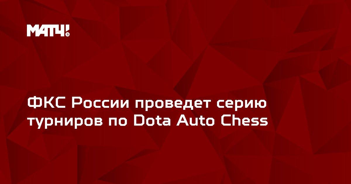 ФКС России проведет серию турниров по Dota Auto Chess