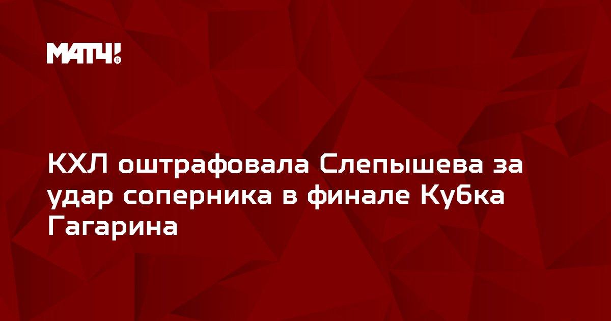 КХЛ оштрафовала Слепышева за удар соперника в финале Кубка Гагарина