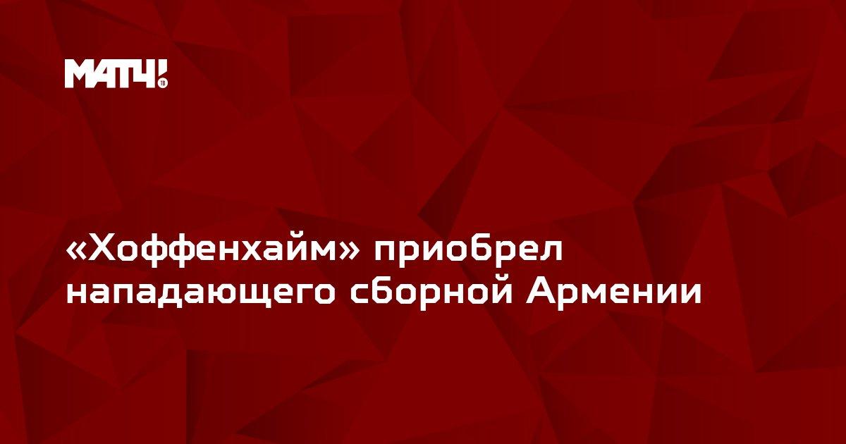 «Хоффенхайм» приобрел нападающего сборной Армении