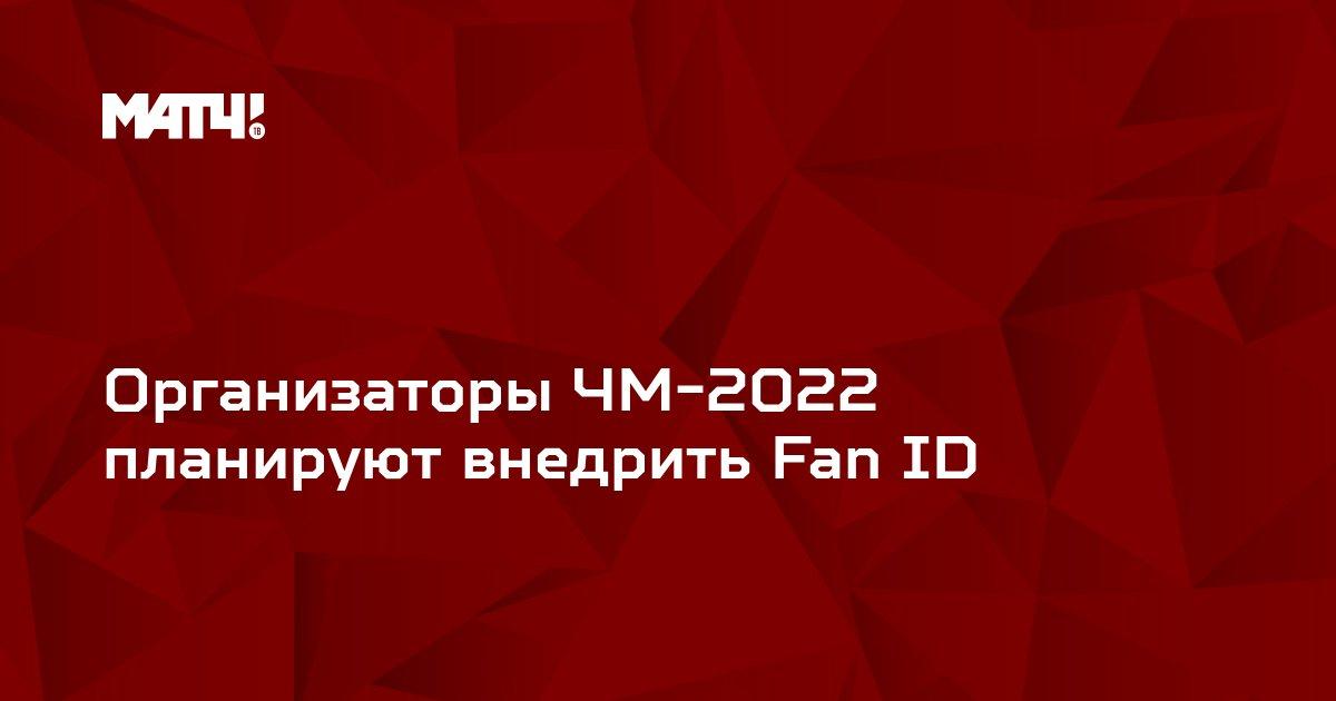 Организаторы ЧМ-2022 планируют внедрить Fan ID
