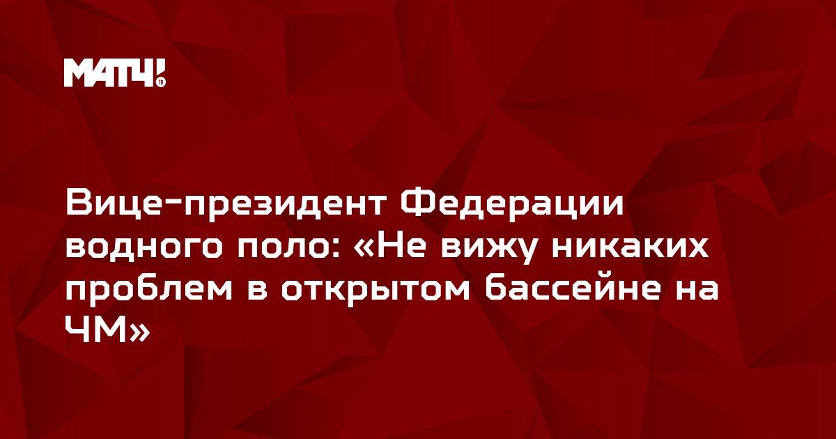 Вице-президент Федерации водного поло: «Не вижу никаких проблем в открытом бассейне на ЧМ»
