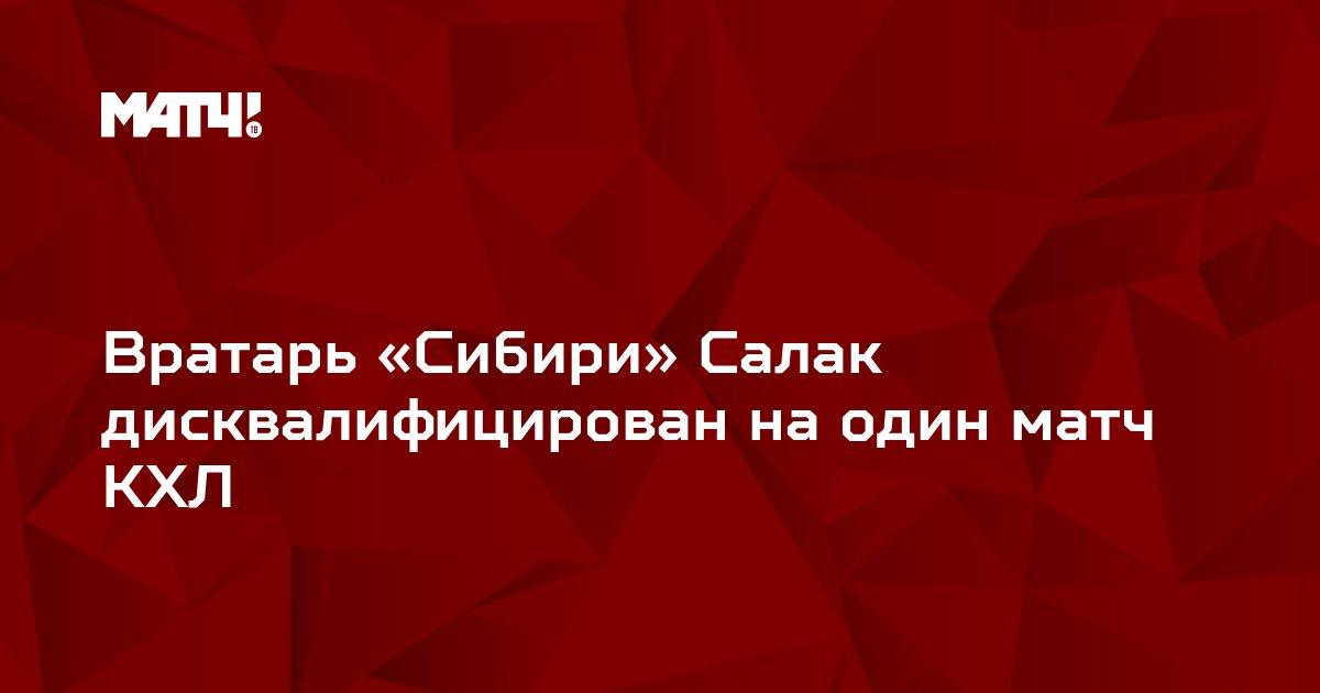 Вратарь «Сибири» Салак дисквалифицирован на один матч КХЛ