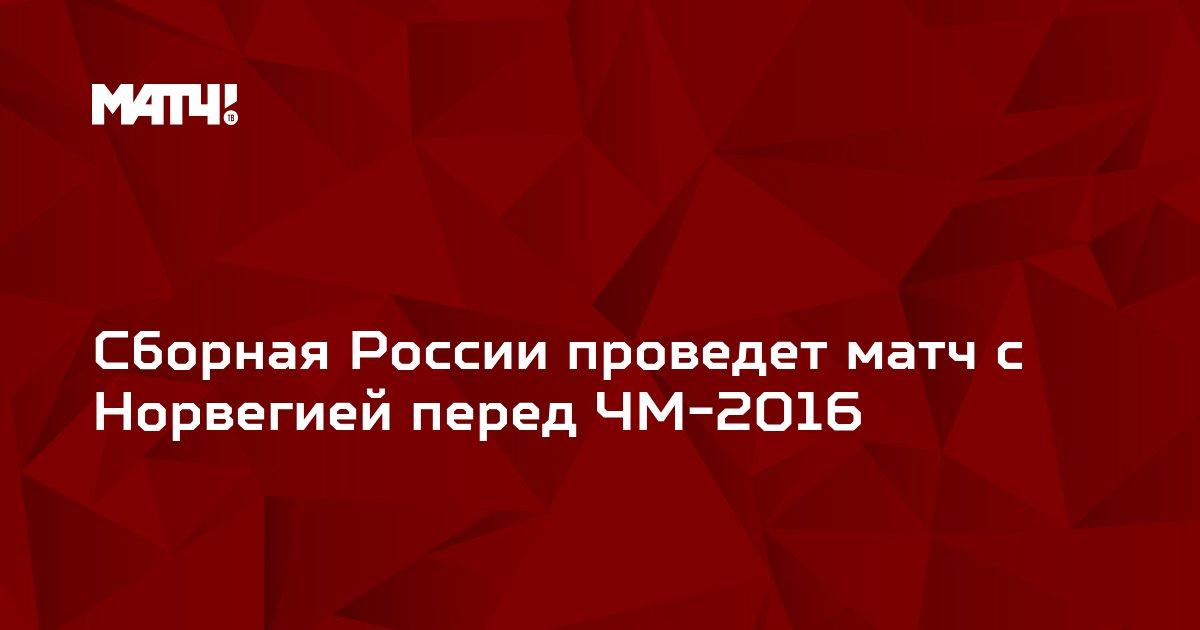 Сборная России проведет матч с Норвегией перед ЧМ-2016