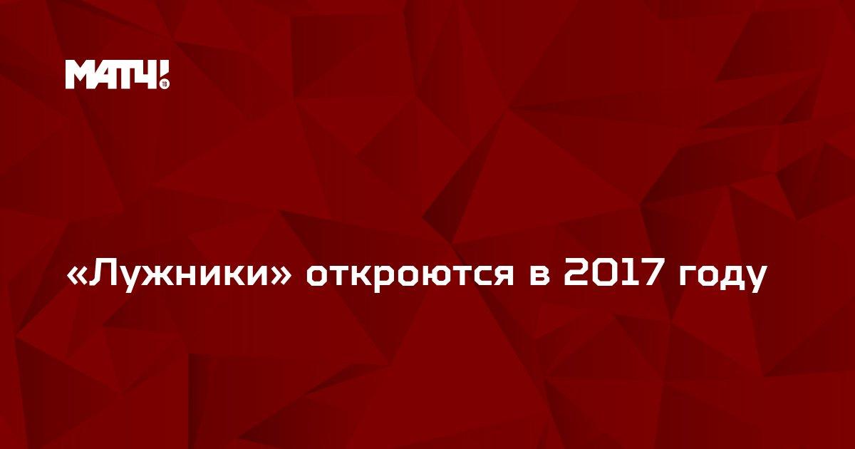 «Лужники» откроются в 2017 году