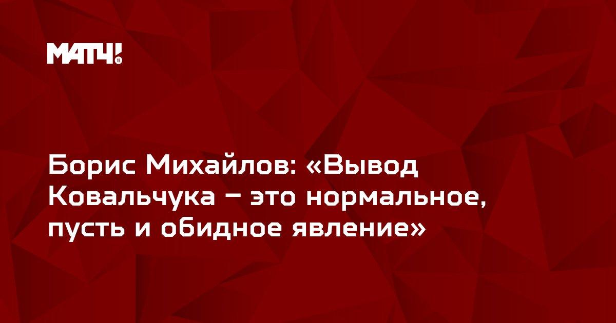 Борис Михайлов: «Вывод Ковальчука – это нормальное, пусть и обидное явление»