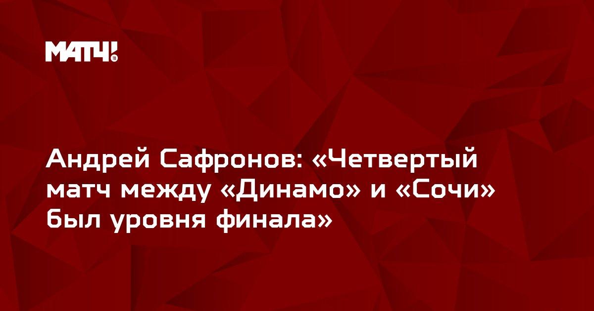 Андрей Сафронов: «Четвертый матч между «Динамо» и «Сочи» был уровня финала»