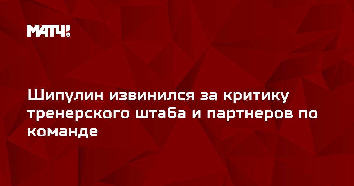 Шипулин извинился за критику тренерского штаба и партнеров по команде