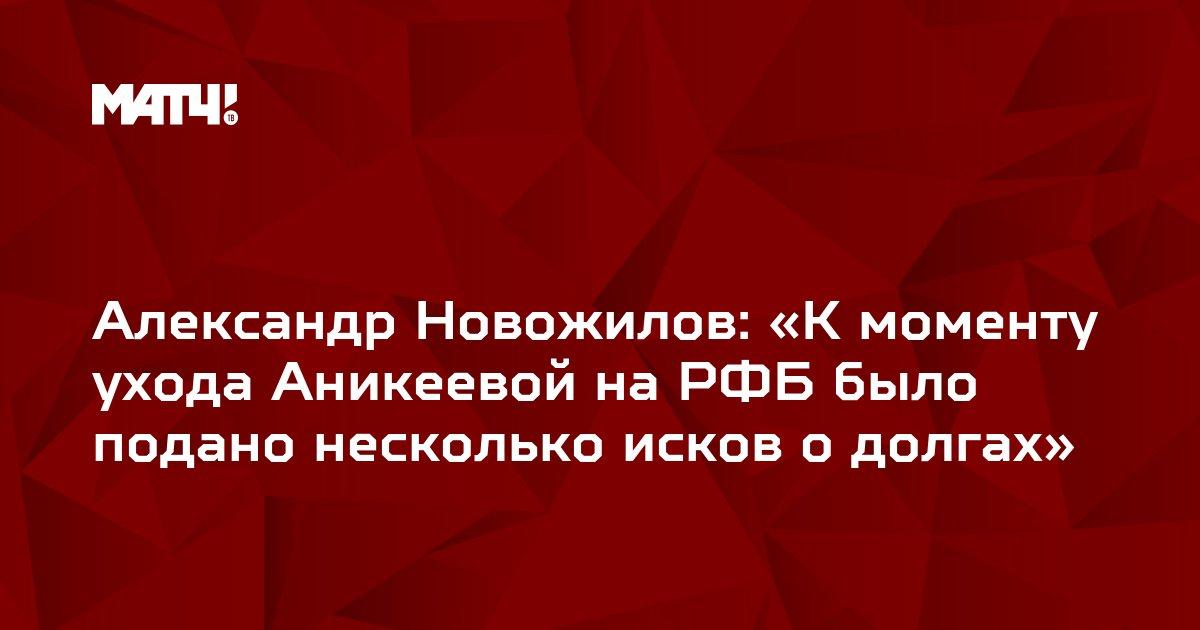 Александр Новожилов: «К моменту ухода Аникеевой на РФБ было подано несколько исков о долгах»