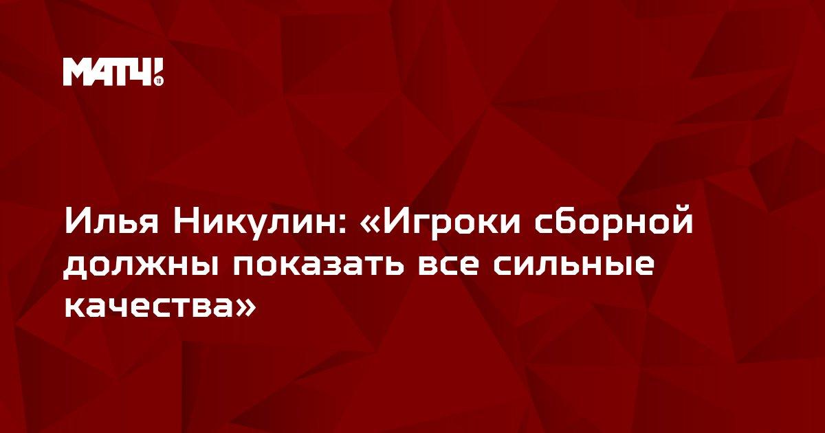 Илья Никулин: «Игроки сборной должны показать все сильные качества»