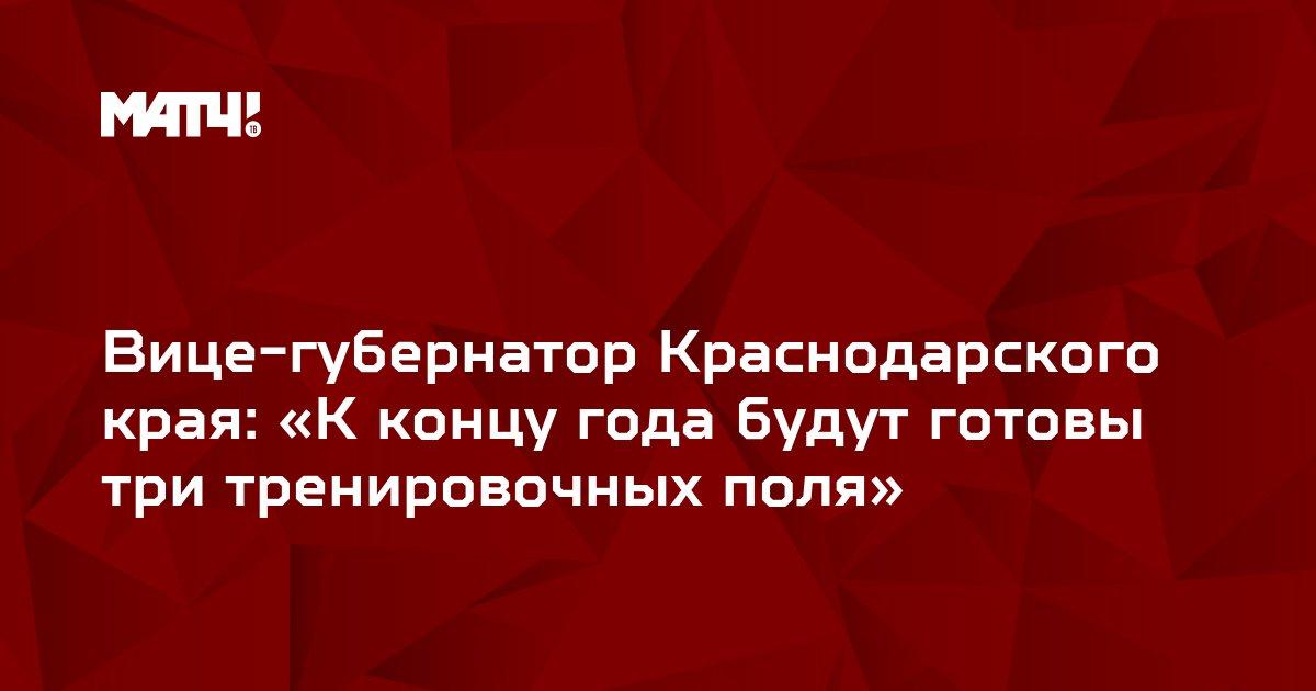 Вице-губернатор Краснодарского края: «К концу года будут готовы три тренировочных поля»