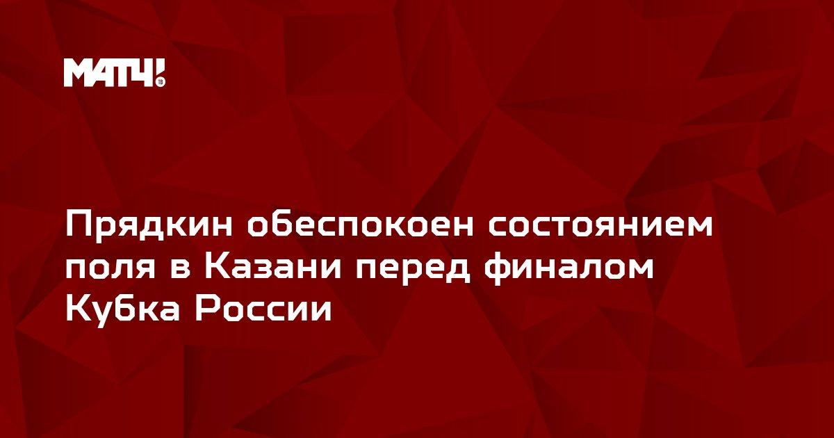 Прядкин обеспокоен состоянием поля в Казани перед финалом Кубка России