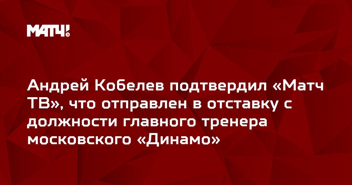 Андрей Кобелев подтвердил «Матч ТВ», что отправлен в отставку с должности главного тренера московского «Динамо»