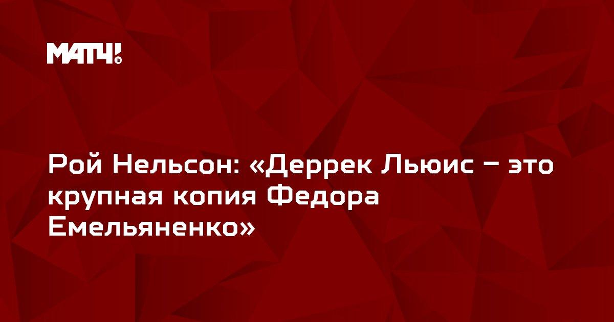 Рой Нельсон: «Деррек Льюис – это крупная копия Федора Емельяненко»