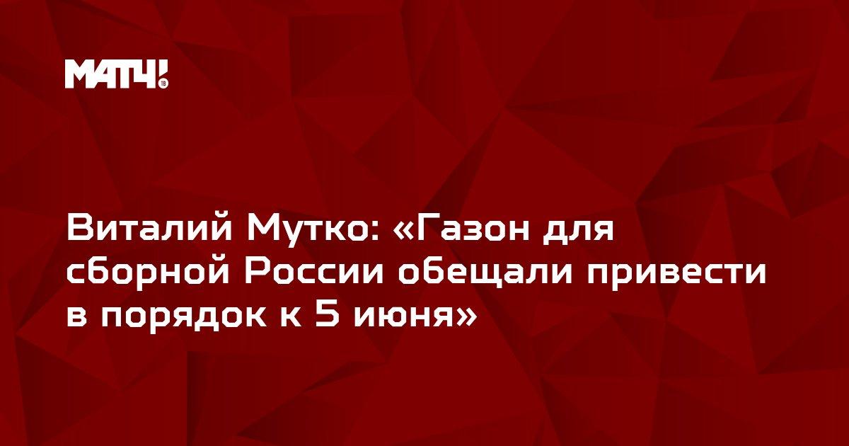 Виталий Мутко: «Газон для сборной России обещали привести в порядок к 5 июня»