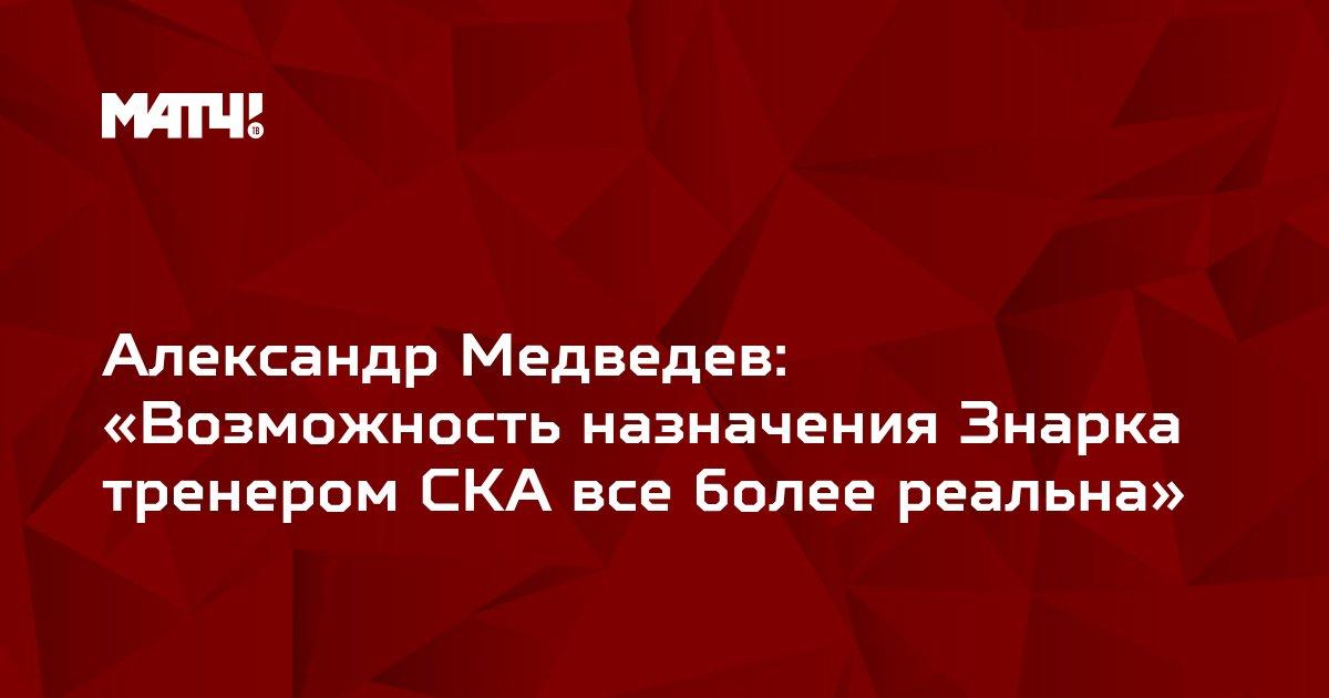 Александр Медведев: «Возможность назначения Знарка тренером СКА все более реальна»