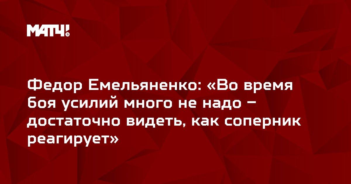 Федор Емельяненко: «Во время боя усилий много не надо – достаточно видеть, как соперник реагирует»
