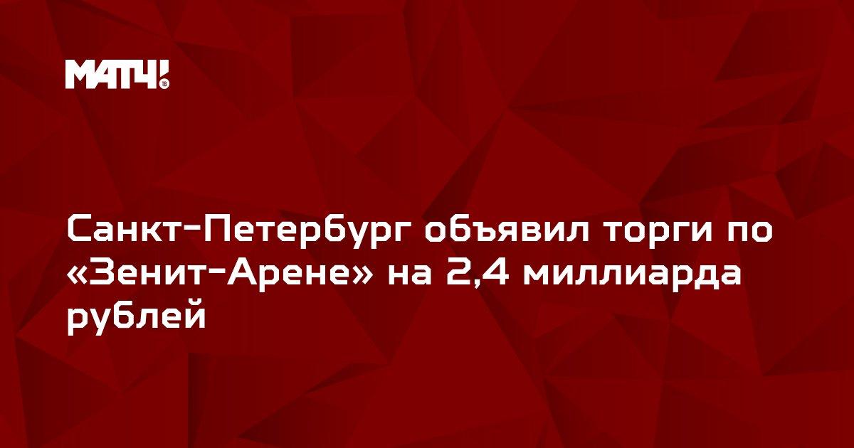 Санкт-Петербург объявил торги по «Зенит-Арене» на 2,4 миллиарда рублей