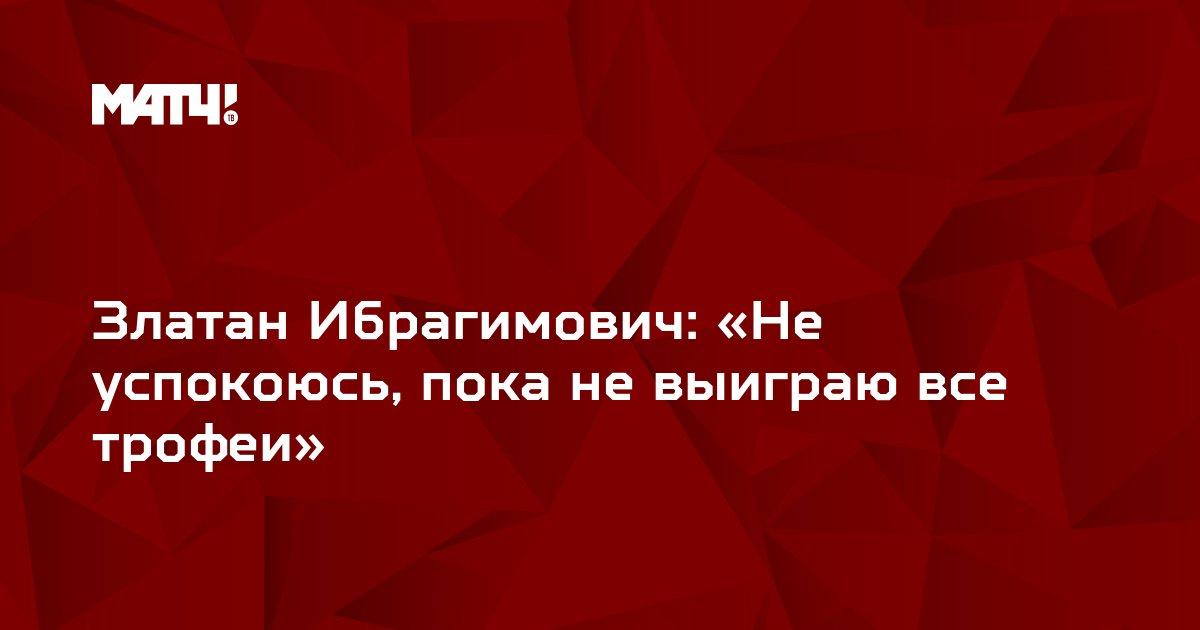 Златан Ибрагимович: «Не успокоюсь, пока не выиграю все трофеи»