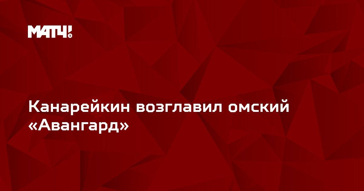 Канарейкин возглавил омский «Авангард»