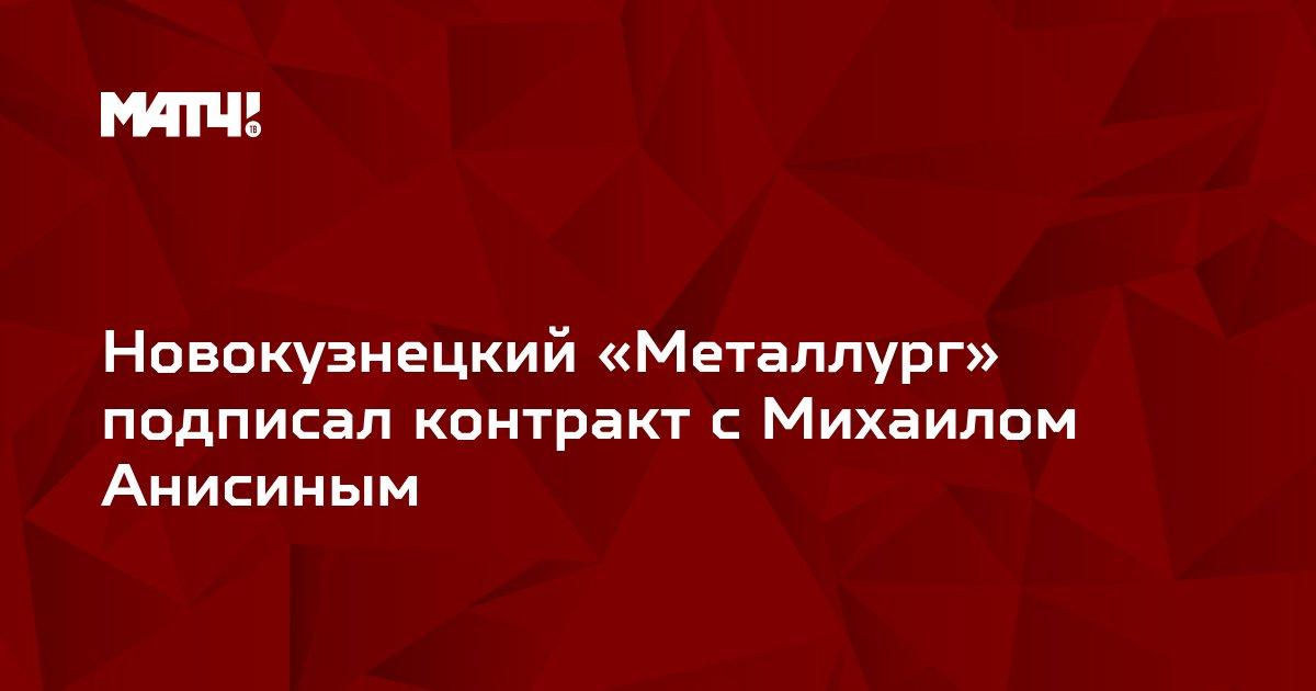 Новокузнецкий «Металлург» подписал контракт с Михаилом Анисиным