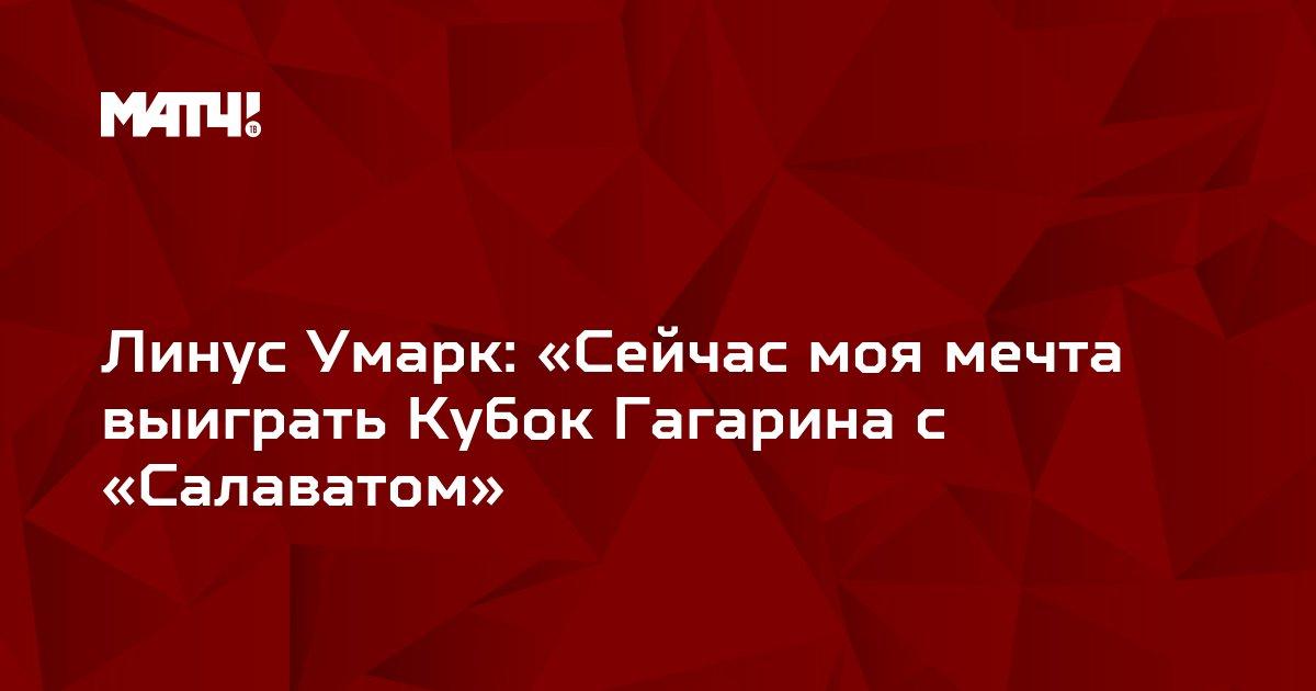Линус Умарк: «Сейчас моя мечта выиграть Кубок Гагарина с «Салаватом»