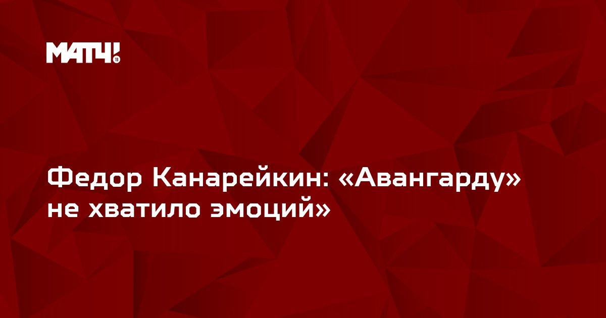Федор Канарейкин: «Авангарду» не хватило эмоций»