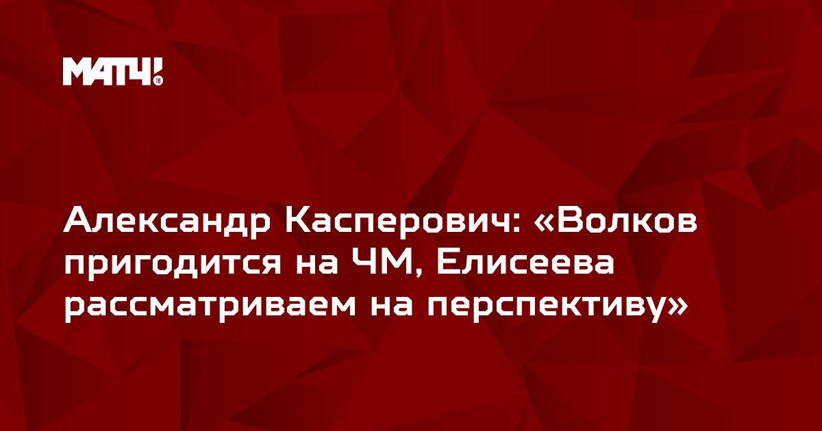 Александр Касперович: «Волков пригодится на ЧМ, Елисеева рассматриваем на перспективу»