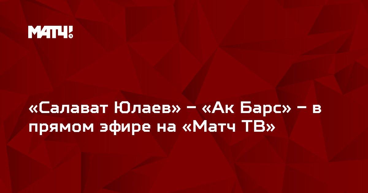 «Салават Юлаев» – «Ак Барс» – в прямом эфире на «Матч ТВ»