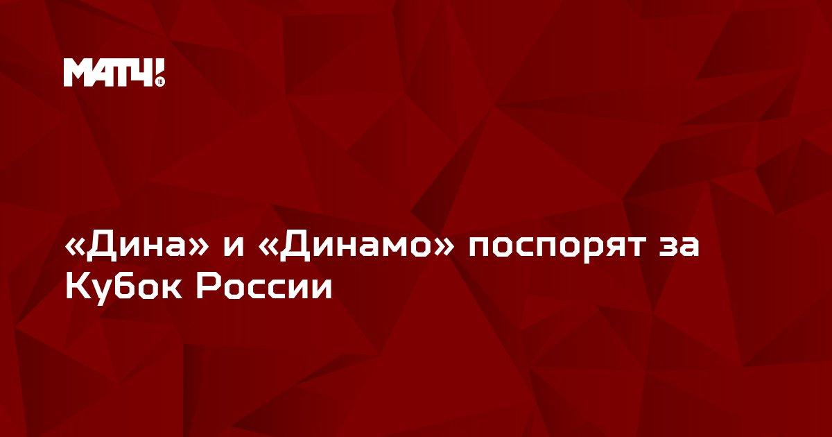 «Дина» и «Динамо» поспорят за Кубок России