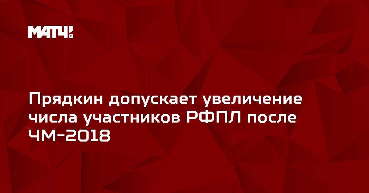 Прядкин допускает увеличение числа участников РФПЛ после ЧМ-2018