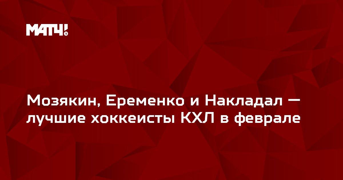 Мозякин, Еременко и Накладал — лучшие хоккеисты КХЛ в феврале