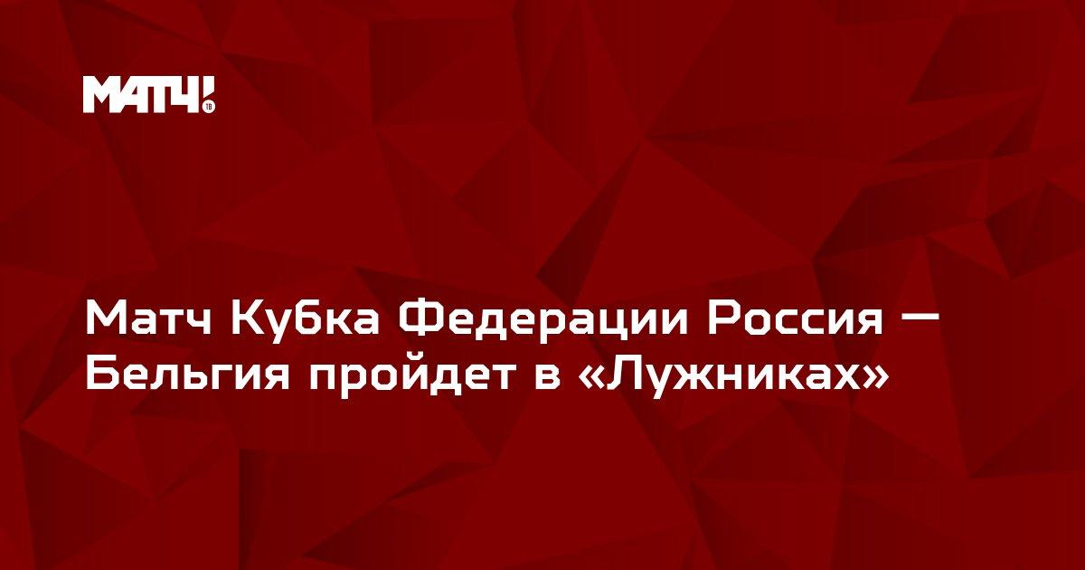Матч Кубка Федерации Россия — Бельгия пройдет в «Лужниках»