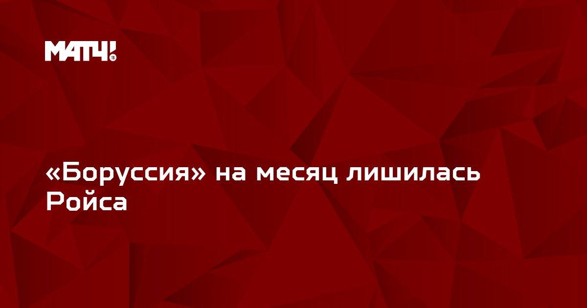 «Боруссия» на месяц лишилась Ройса