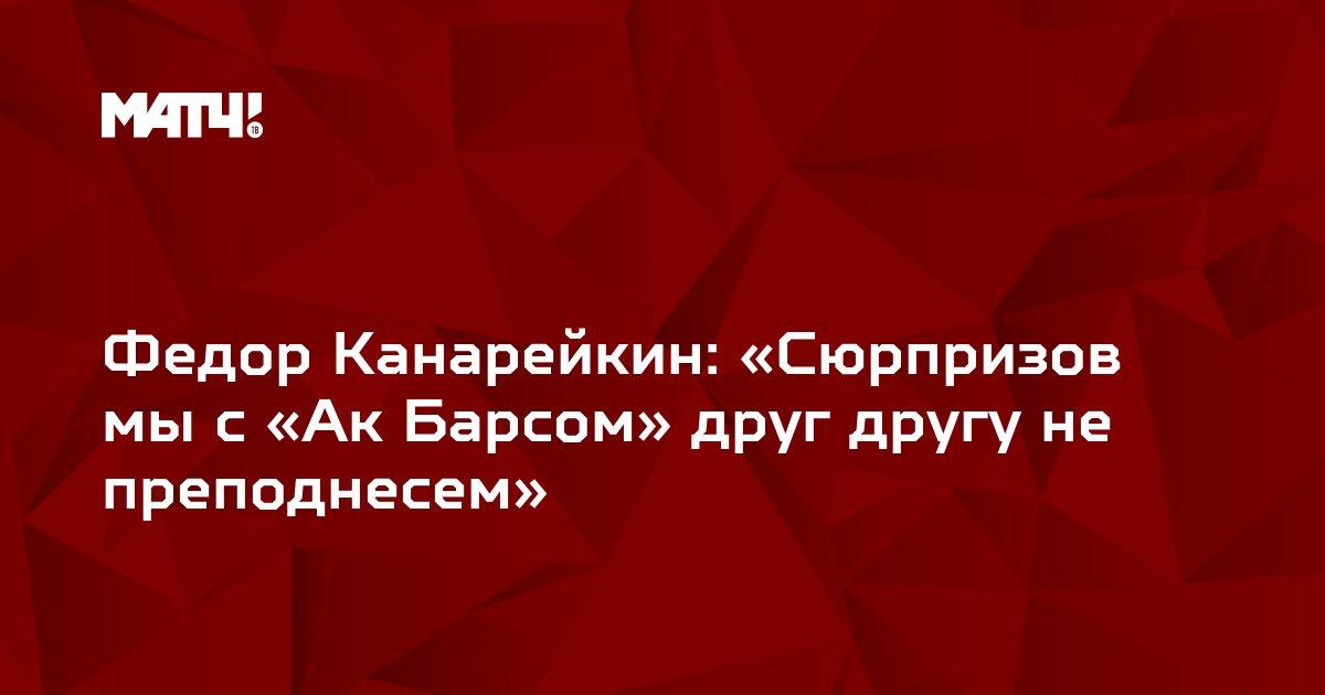 Федор Канарейкин: «Сюрпризов мы с «Ак Барсом» друг другу не преподнесем»