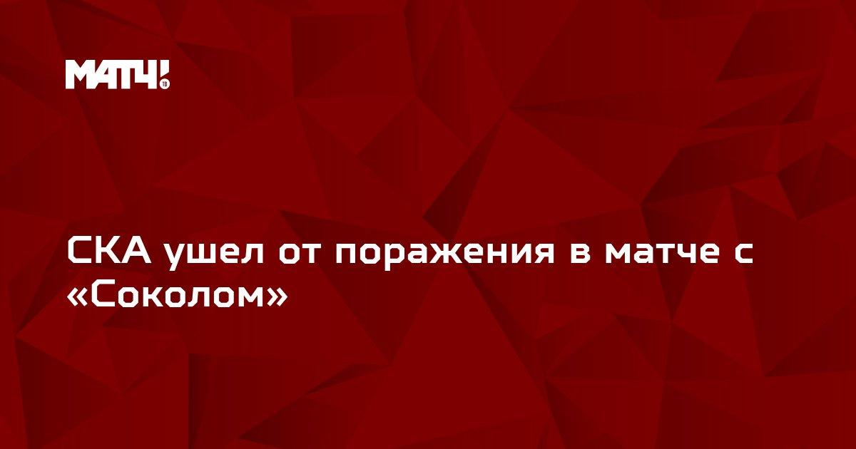 СКА ушел от поражения в матче с «Соколом»