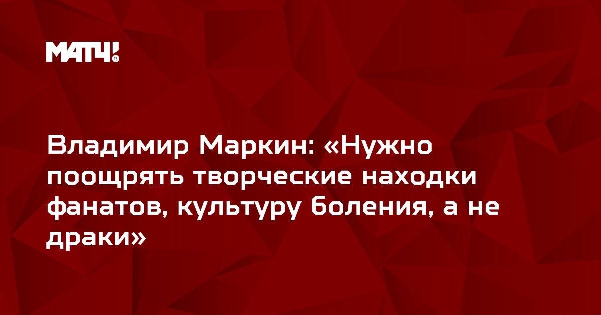 Владимир Маркин: «Нужно поощрять творческие находки фанатов, культуру боления, а не драки»
