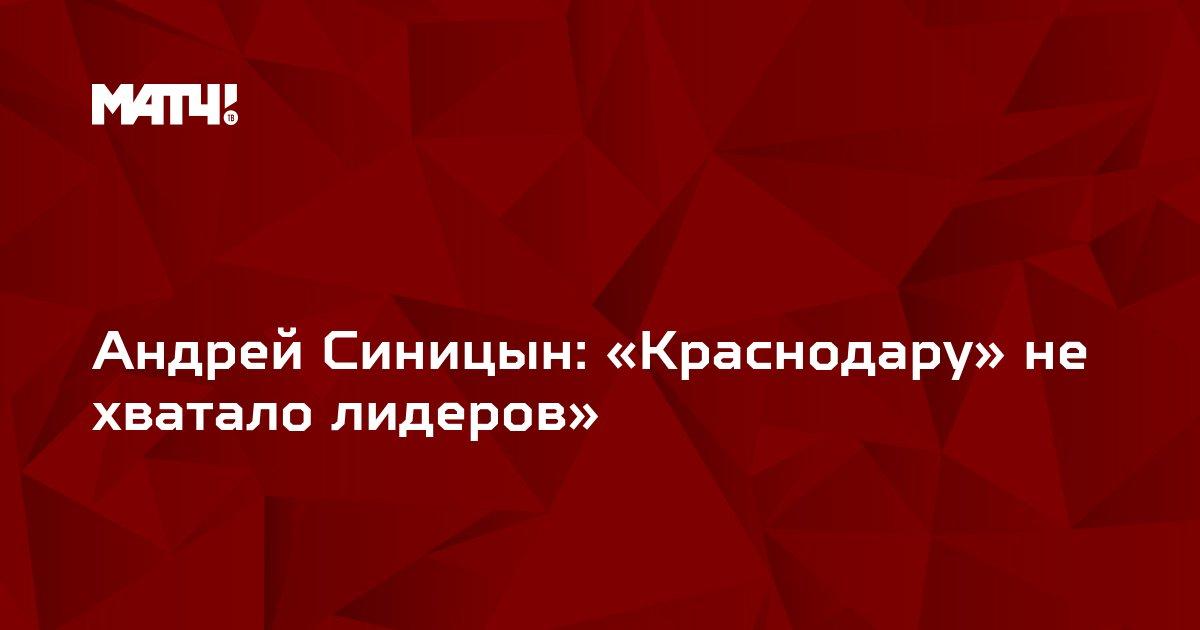 Андрей Синицын: «Краснодару» не хватало лидеров»