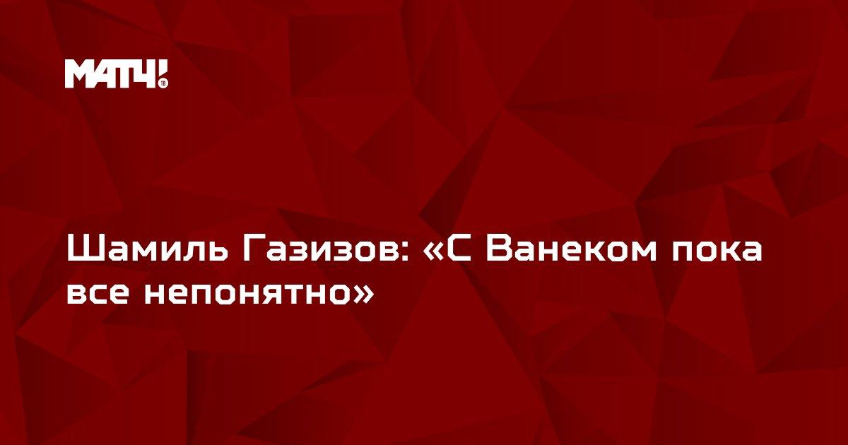 Шамиль Газизов: «С Ванеком пока все непонятно»