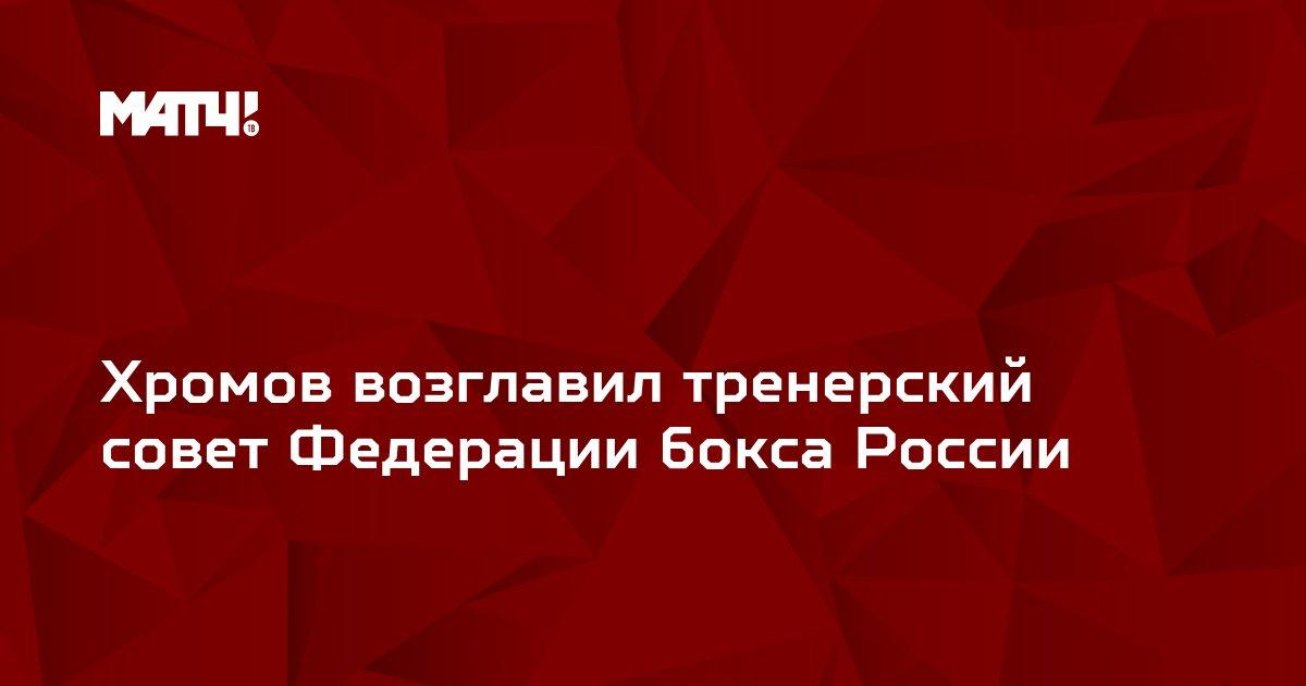 Хромов возглавил тренерский совет Федерации бокса России
