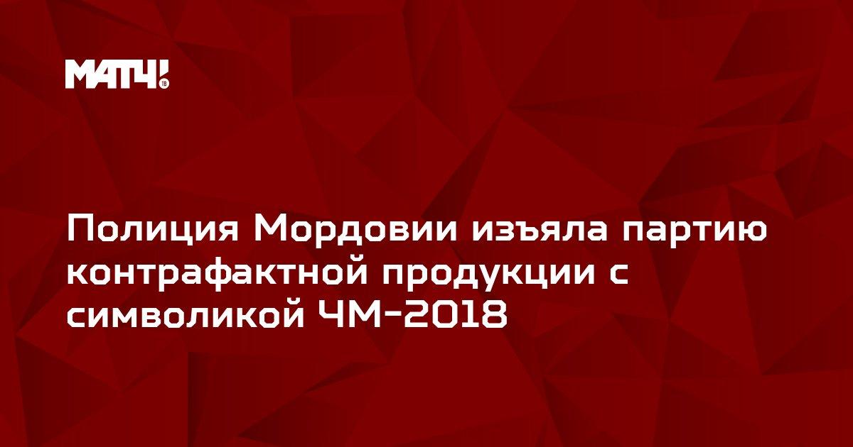 Полиция Мордовии изъяла партию контрафактной продукции с символикой ЧМ-2018