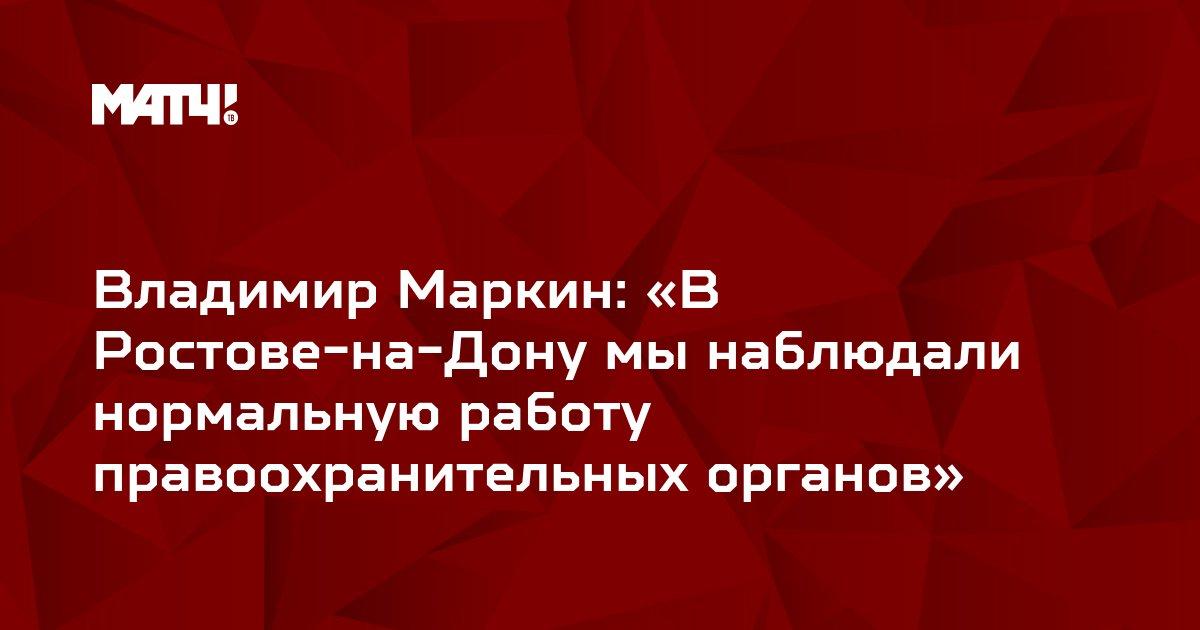 Владимир Маркин: «В Ростове-на-Дону мы наблюдали нормальную работу правоохранительных органов»