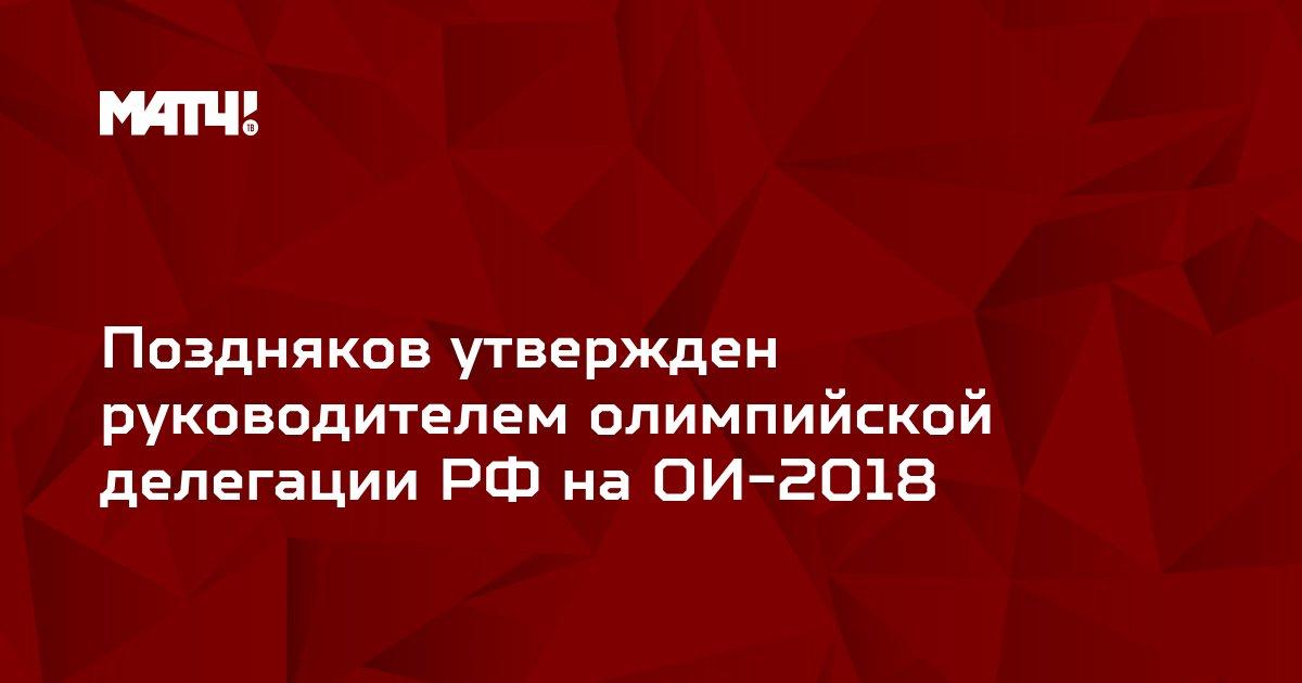 Поздняков утвержден руководителем олимпийской делегации РФ на ОИ-2018