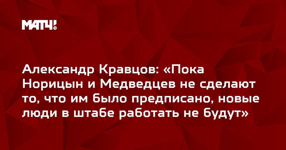 Александр Кравцов: «Пока Норицын и Медведцев не сделают то, что им было предписано, новые люди в штабе работать не будут»