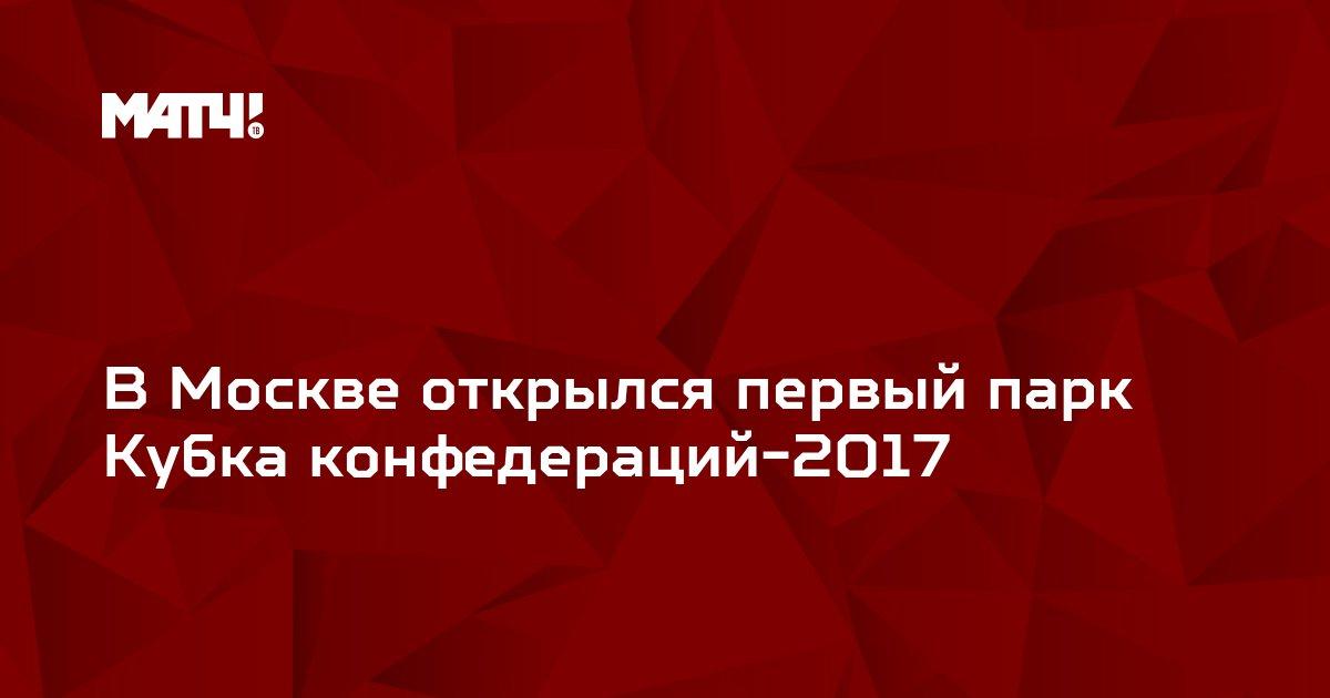 В Москве открылся первый парк Кубка конфедераций-2017