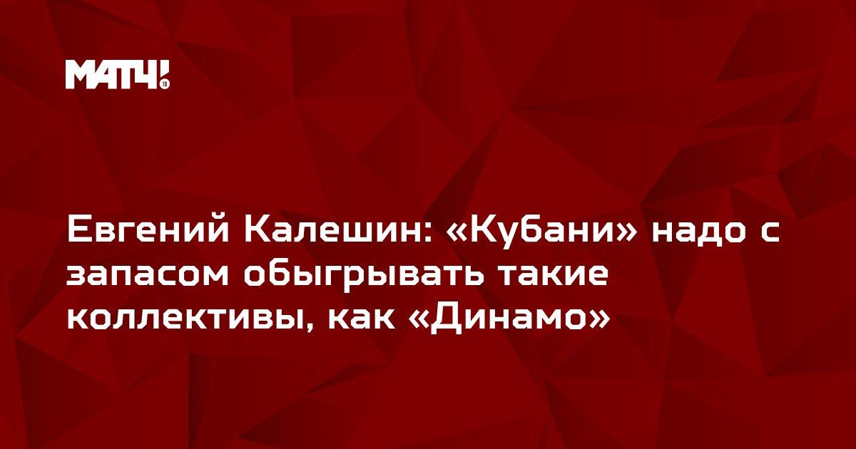 Евгений Калешин: «Кубани» надо с запасом обыгрывать такие коллективы, как «Динамо»