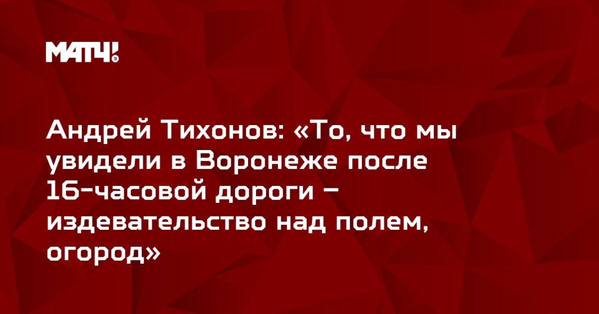 Андрей Тихонов: «То, что мы увидели в Воронеже после 16-часовой дороги – издевательство над полем, огород»