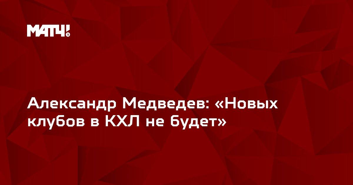 Александр Медведев: «Новых клубов в КХЛ не будет»
