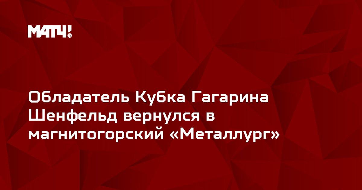 Обладатель Кубка Гагарина Шенфельд вернулся в магнитогорский «Металлург»