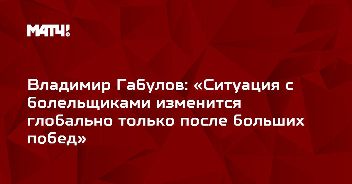 Владимир Габулов: «Ситуация с болельщиками изменится глобально только после больших побед»