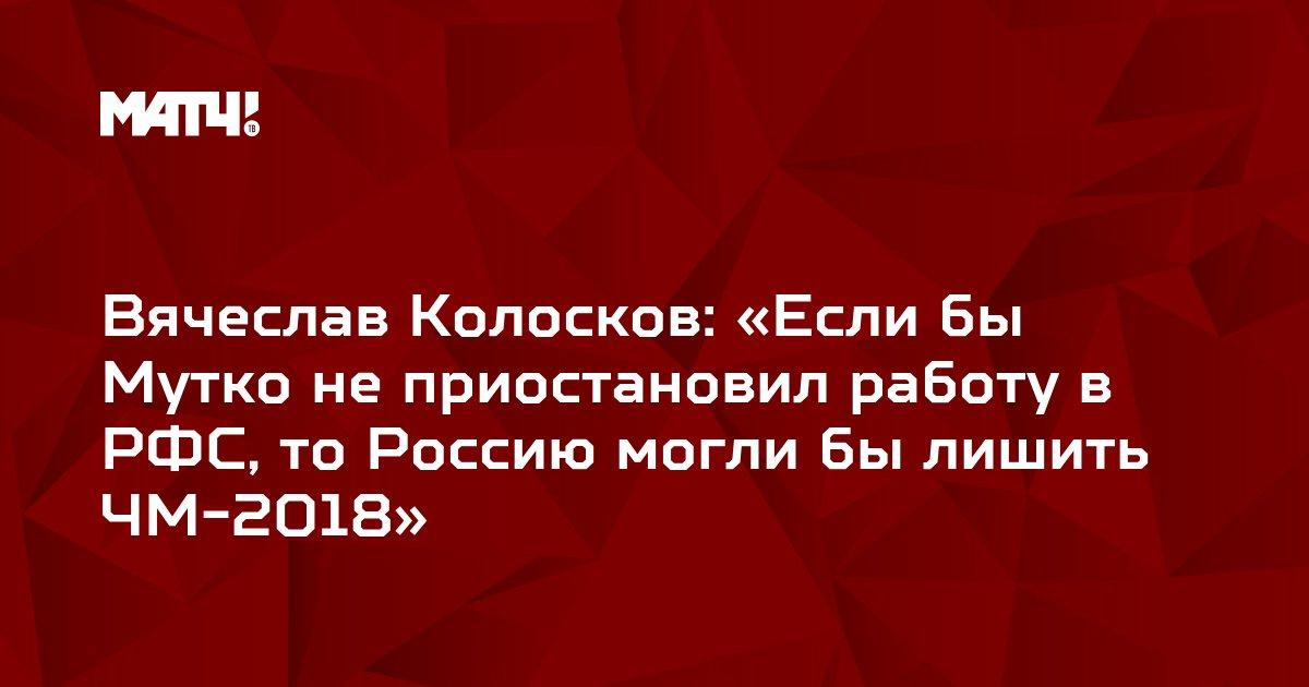 Вячеслав Колосков: «Если бы Мутко не приостановил работу в РФС, то Россию могли бы лишить ЧМ-2018»
